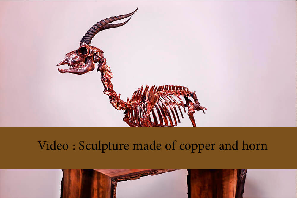 Video   Sculpture made of copper and horn - Public Mourning Video